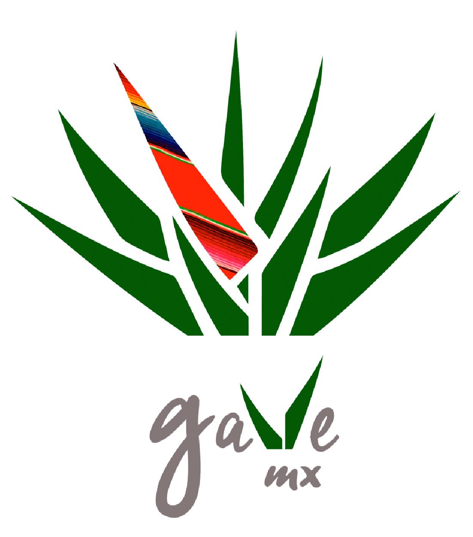GAVE MX